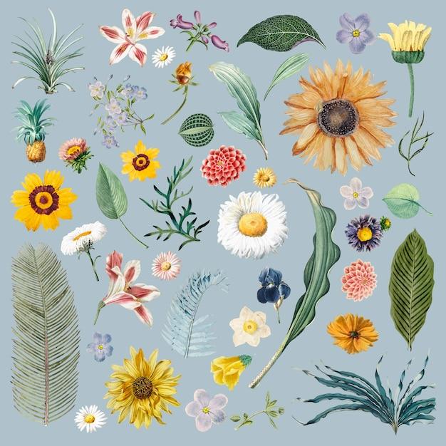 花の背景パターン 無料ベクター