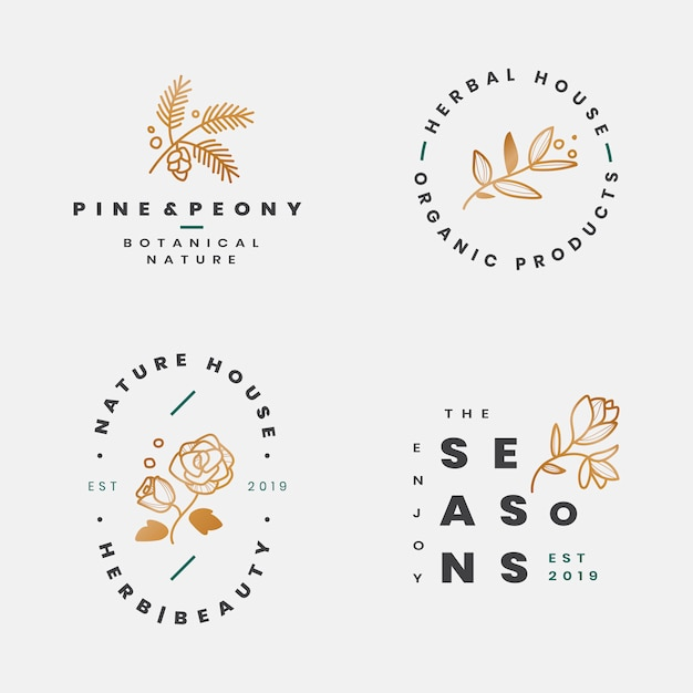 花の植物のフレームコレクション 無料ベクター