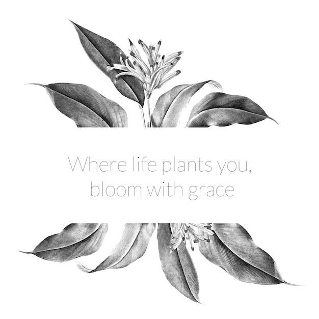 Иллюстрация баннера тропического растения Бесплатные векторы