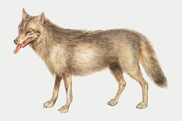 オオカミのビンテージスタイル 無料ベクター