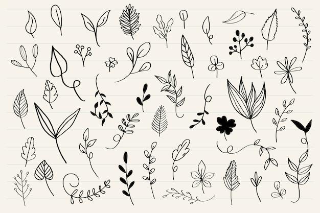 様々な葉落書きコレクションベクトル 無料ベクター