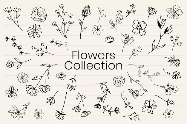様々な花の落書きコレクションベクトル 無料ベクター