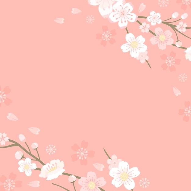 ピンクの桜の空白の背景のベクトル 無料ベクター