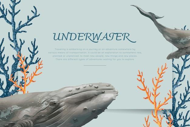 Рисованной кит Бесплатные векторы