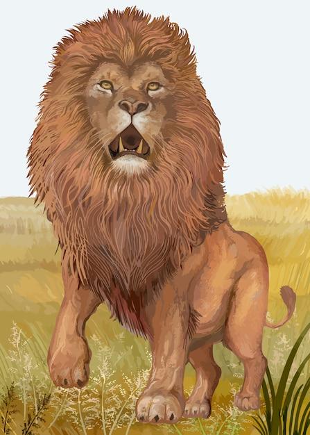 手描きのライオン 無料ベクター