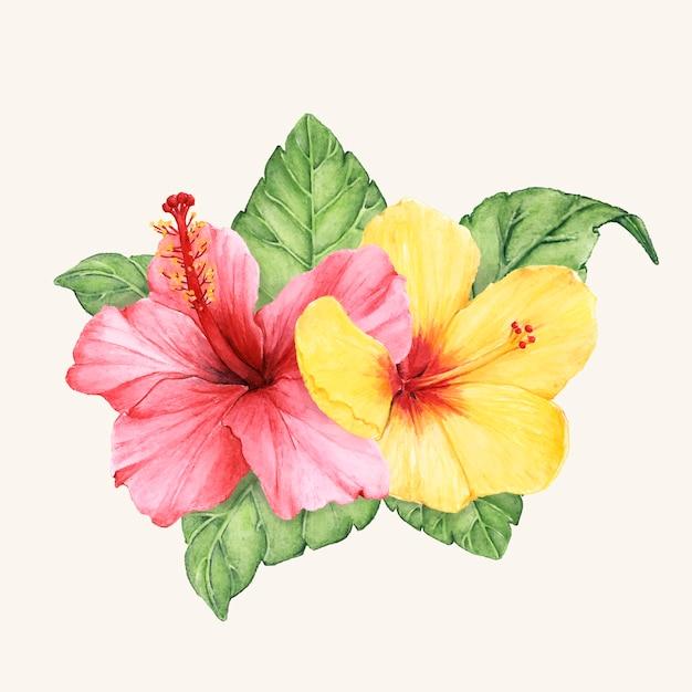 手で描いた花のベクトルを分離 無料ベクター