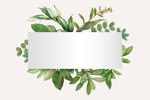 植物をテーマにしたデザインスペース 無料ベクター