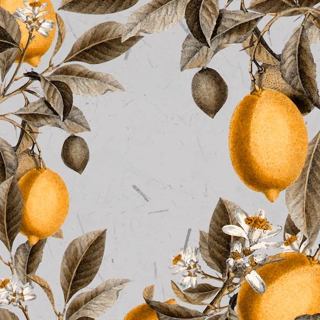 空白のレモンの木カード 無料ベクター