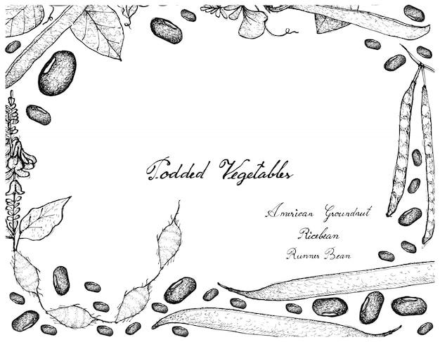 ポッド野菜フレームの手描き Premiumベクター