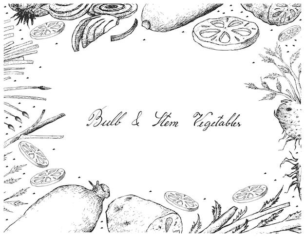 白、背景、球茎、茎、野菜、フレーム Premiumベクター