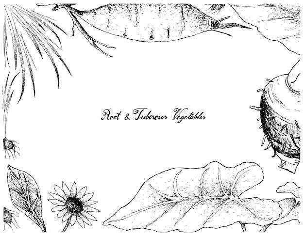 根と塊茎の野菜の手描きのフレーム Premiumベクター