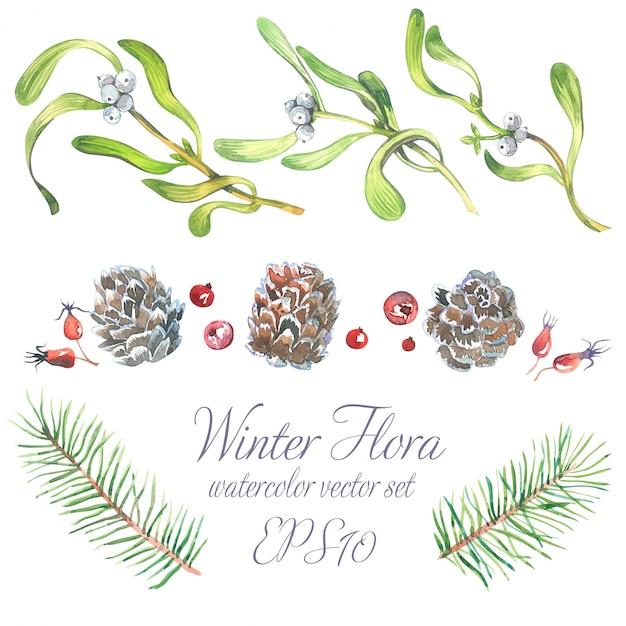 白い果実とヤドリギの小枝の木の枝から設定水彩クリスマス。 Premiumベクター