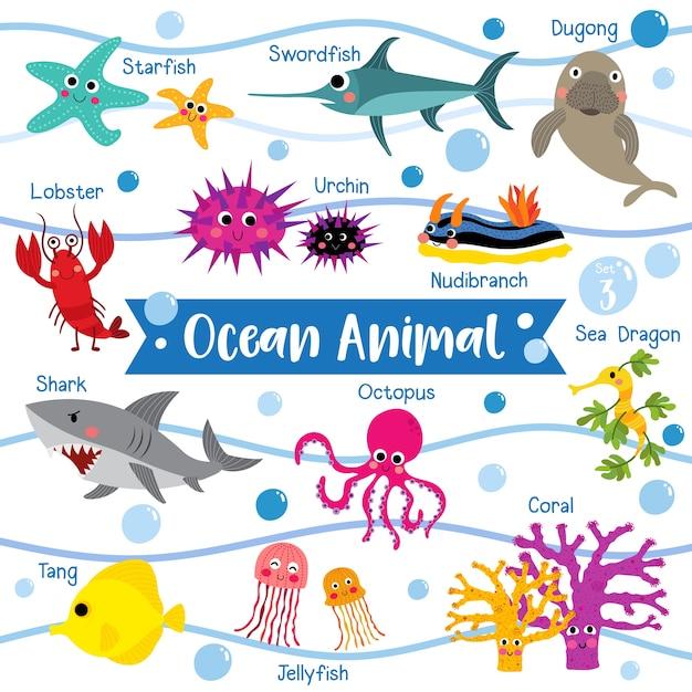 海洋動物漫画動物の名前 Premiumベクター