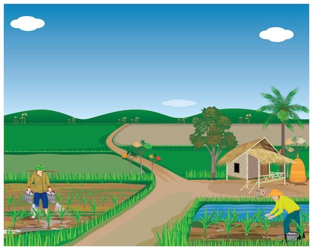 Образ жизни людей в сельской местности векторный дизайн Premium векторы