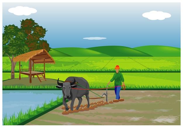水田の農家プラウ Premiumベクター