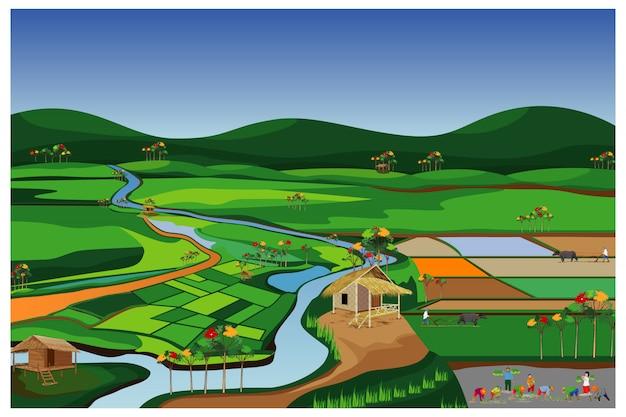 水田のベクトルのデザインで農家移植稲 Premiumベクター
