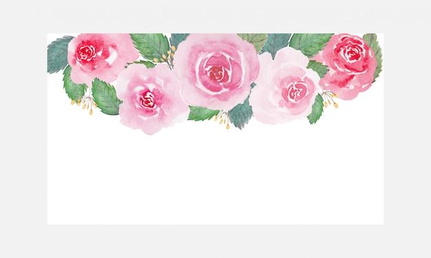Красивые мягкие тона розы цветок акварель на белом фоне Premium векторы