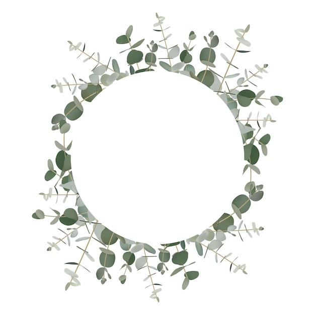 Зелень эвкалипта фон рамки Premium векторы