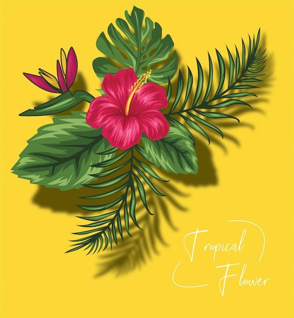 Красивые тропические цветы Premium векторы