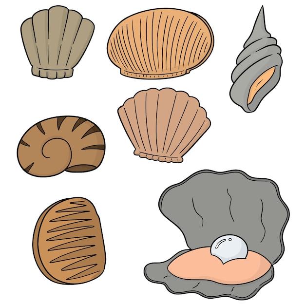 Набор морских раковин Premium векторы