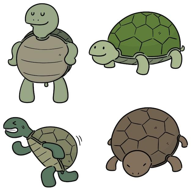 Набор милых черепах Premium векторы