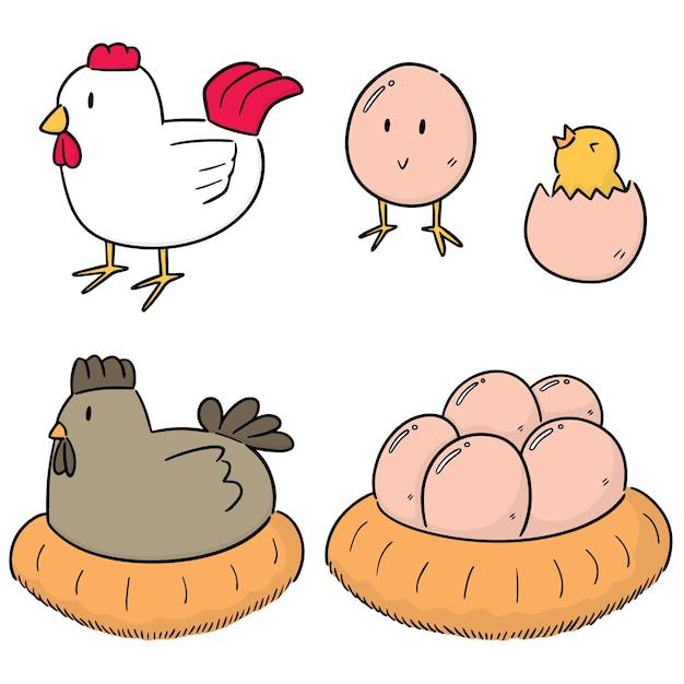 鶏と卵のベクトルセット Premiumベクター