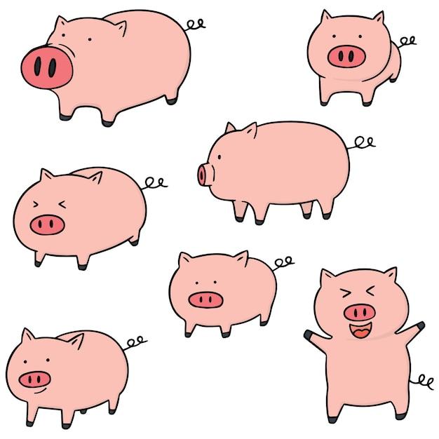 Набор свиней Premium векторы