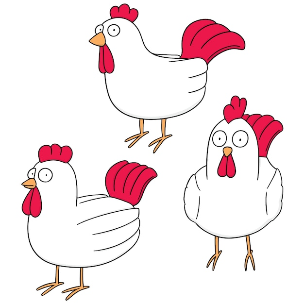 チキンのベクトルセット Premiumベクター