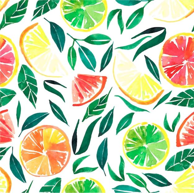 シトラスオレンジレモングレープフルーツ、葉のパターン Premiumベクター
