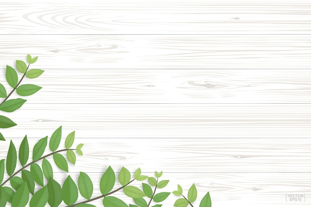 緑の葉の木のテクスチャ。 Premiumベクター