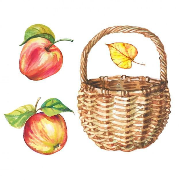 水彩のリンゴと枝編み細工品バスケットのセット。 Premiumベクター
