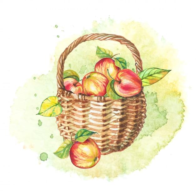 秋の水彩画の静物画。りんごのバスケット。 Premiumベクター