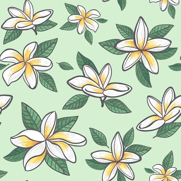 ジャスミンの花柄のラッピング Premiumベクター