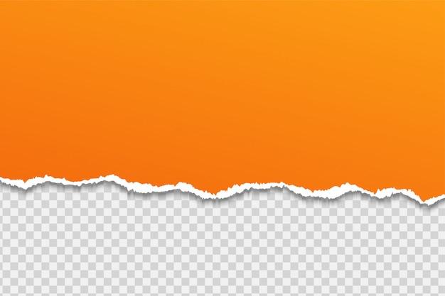 破れた紙または端透明な背景の上。 Premiumベクター
