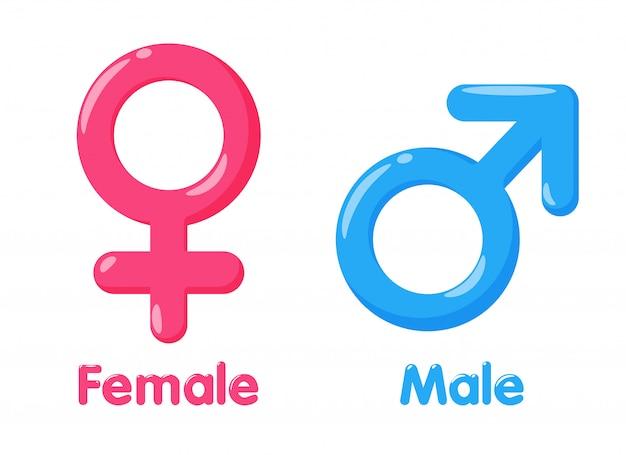 性別のシンボル。男女の性別および平等の意味 Premiumベクター