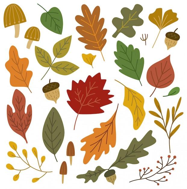 Набор элементов дизайна осенних листьев Premium векторы