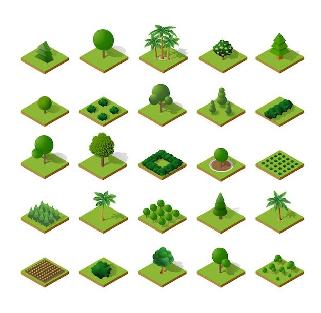 Деревья лесного кемпинга Premium векторы