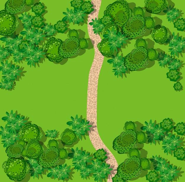 森と田舎のトップビュー Premiumベクター