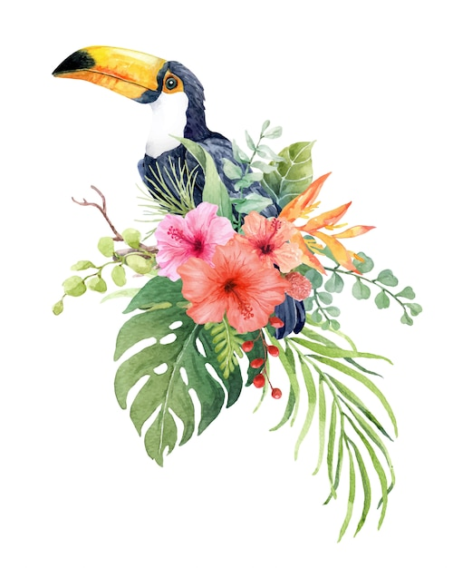 熱帯の葉と枝に水彩のオオハシ鳥 Premiumベクター