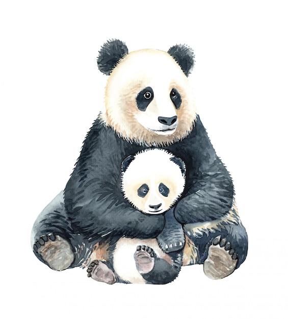Акварель панда обнять ребенка панда иллюстрации. Premium векторы