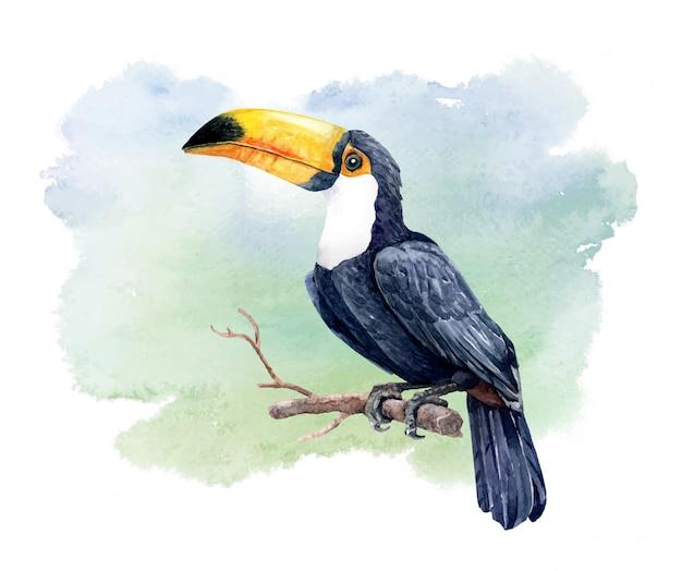 Акварельная птица тукан на ветке дерева Premium векторы