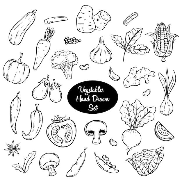 Овощи рисованной или каракули набор с черным и белым цветом Premium векторы