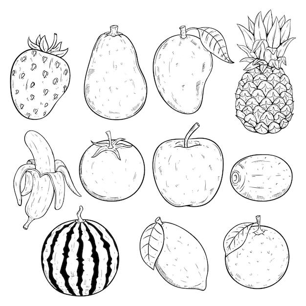 スケッチまたは手描きの白い背景の上の新鮮で健康的なジューシーなフルーツのセット Premiumベクター