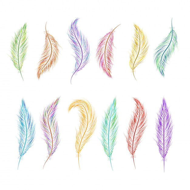 異なる色で手描きの羽のセット Premiumベクター