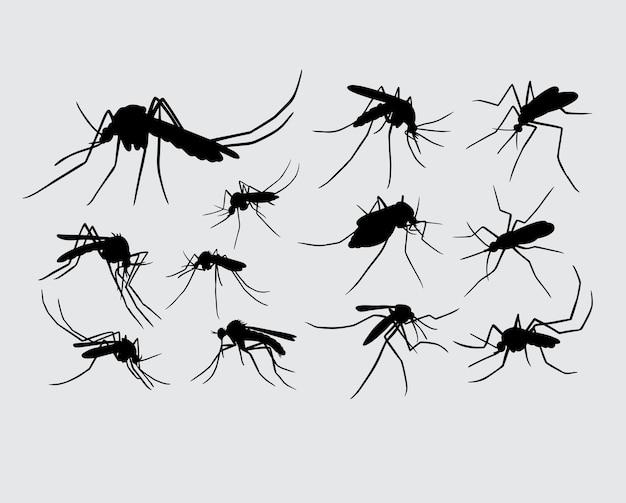 蚊の昆虫の動物のシルエット Premiumベクター