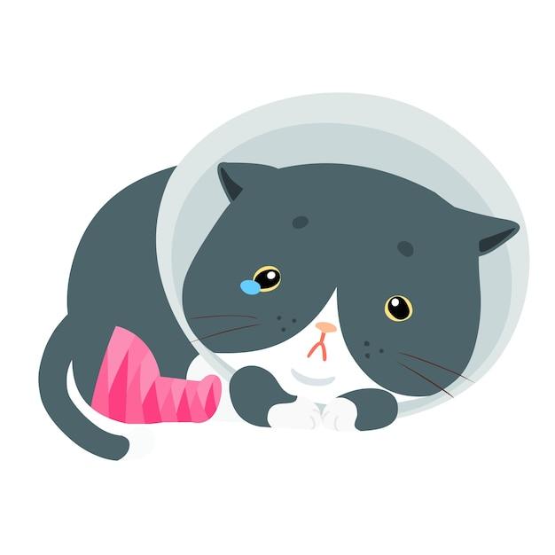 ふわふわした猫の傷害の足のベクトルのイラスト プレミアムベクター