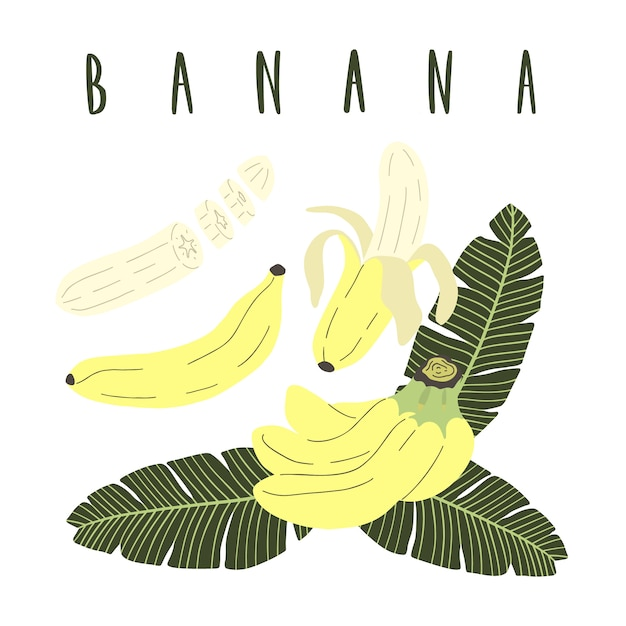 バナナの手描きの漫画のセット。 Premiumベクター