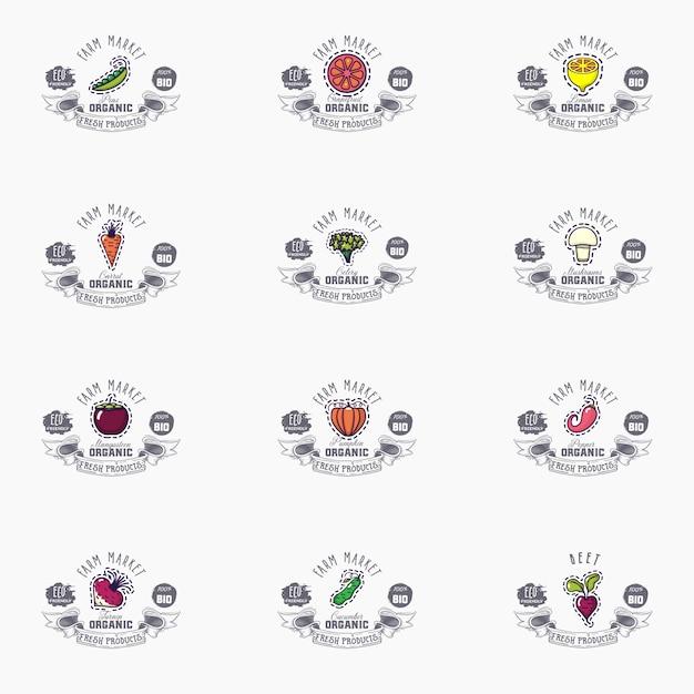 Векторные баннеры с фруктами Premium векторы