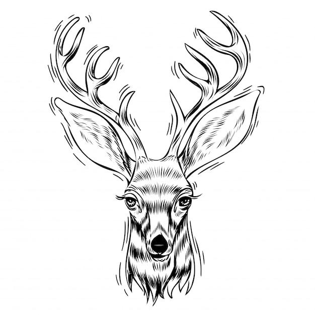 鹿の手描きの肖像画 Premiumベクター