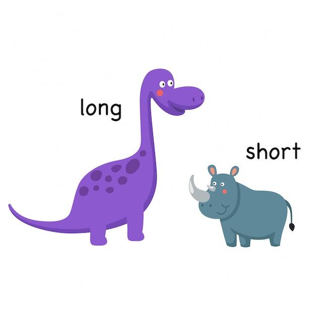 長いと短いベクトル図の反対 Premiumベクター